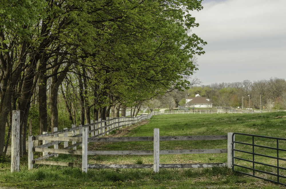 Haven for retired horses Shaded paddock, enclosed by long weathered fence with iron gate, at a public equestrian center in spring, northern Illinois