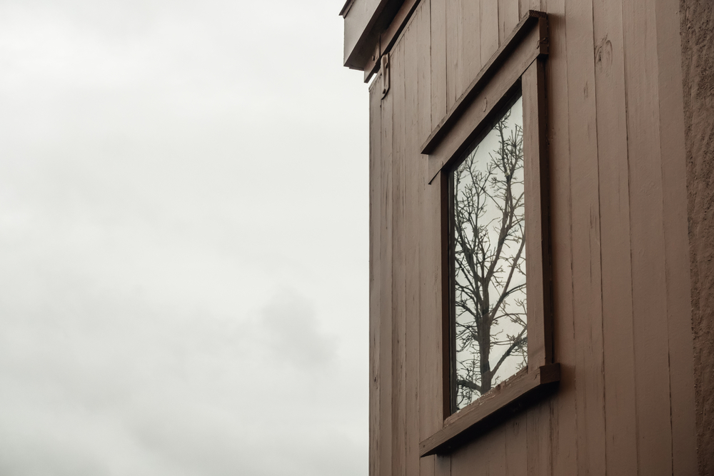 Reflection of bare tree in tall barn window on overcast day late in autumn, northern Illinois, USA